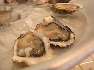 SF Dinner oyster 1