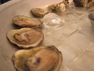 SF Dinner oyster 2